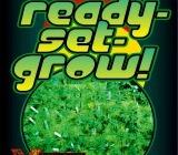 High Times: Ready Set Grow