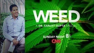 Weed: A Dr Sanjay Gupta Special