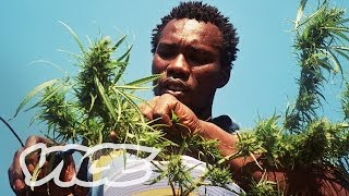 Swaziland: Gold Mine of Marijuana