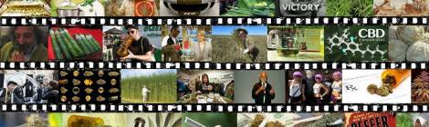 Cannabis Documentaries