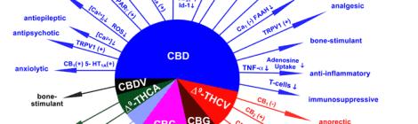 Non Psychoactive Dietary Cannabis