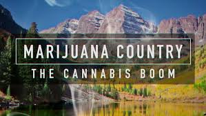 Marijuana Country The Cannabis Boom