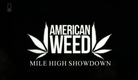 American Weed Mile High Showdown