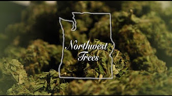 northwest-trees