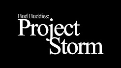 Bud Buddies Project Storm